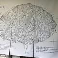 ChoSintaNonaiChizu03