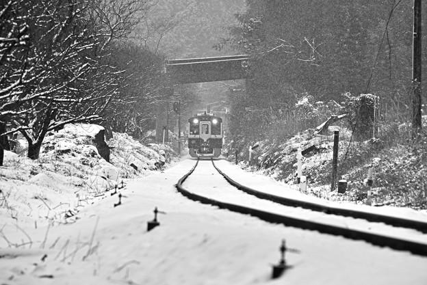 Photos: 雪中進行