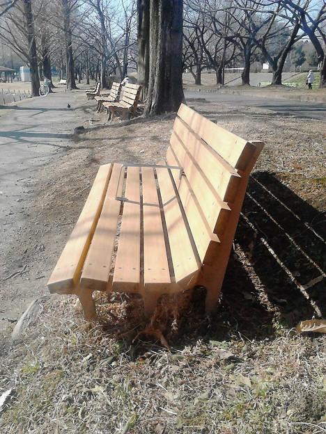 冬の公園ベンチ!
