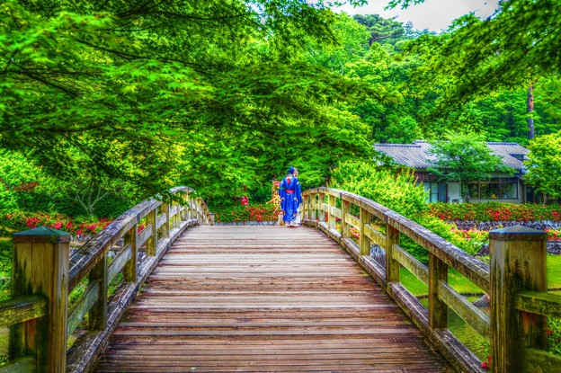 Photos: Welcome to GreenForest ~橋~