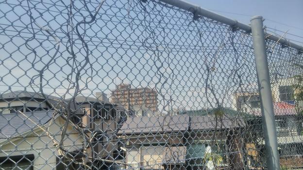 【5月13日は幸手市へ7】フェンス