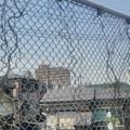 Photos: 【5月13日は幸手市へ7】フェンス