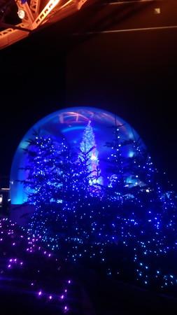 東京タワーにて6(2016/12/15)