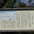 木ノ根神社の由来