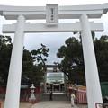 Photos: 唐津神社