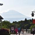 建物との比較で富士山の大きさを実感