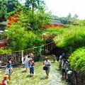 Photos: 御手洗川に架かる輪橋と楼門