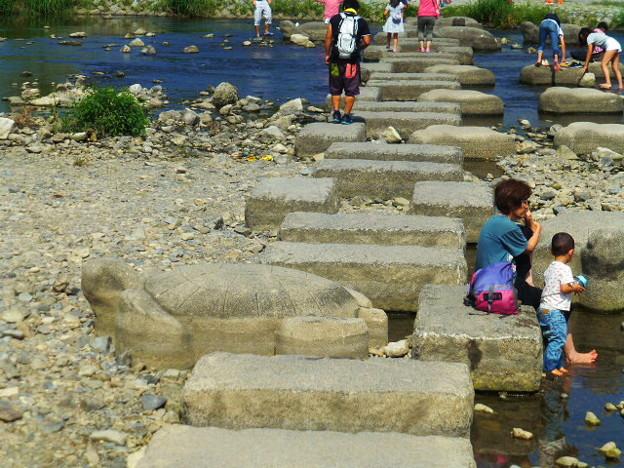 鴨川の飛び石