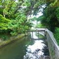 Photos: 葉山さんぽ