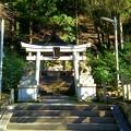 中川八幡宮社