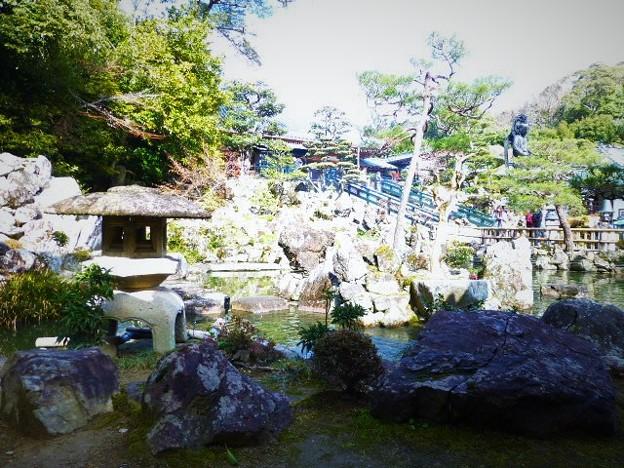 資料館前の池苑