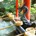 Photos: 来宮神社 手水舎