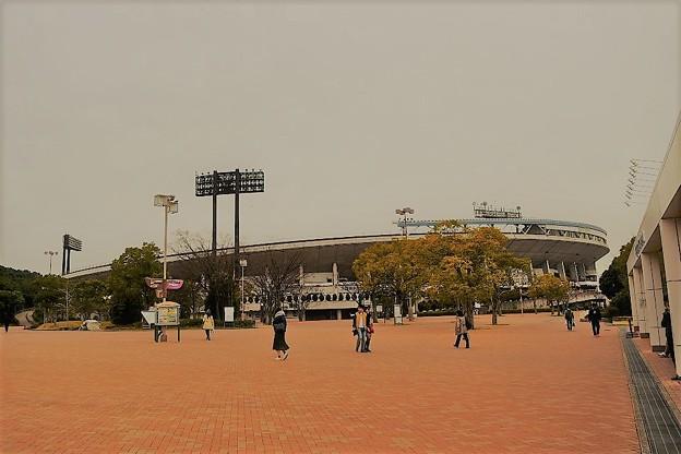グリーンスタジアム神戸