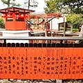 Photos: 約2000もの朱色の玉垣が並ぶ