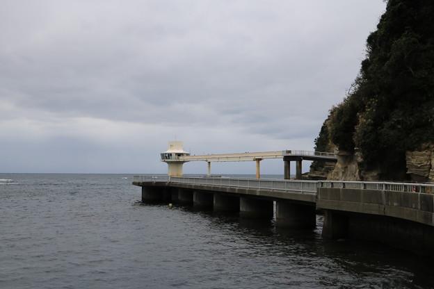 かつうら海中公園