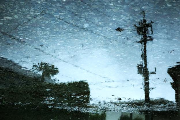 写真: サカサマの空