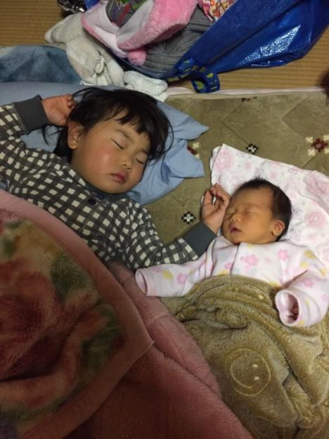 Photos: そっくり寝