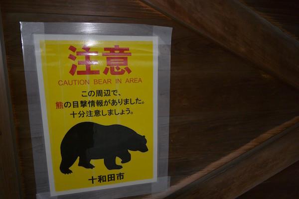 ここでも熊が出たのですね