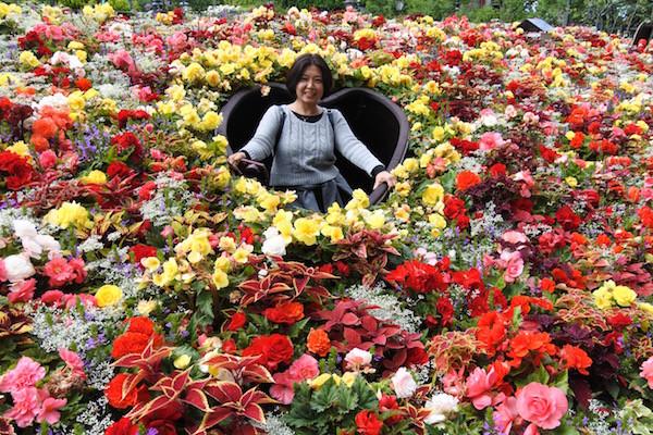 花に囲まれたハートで撮影