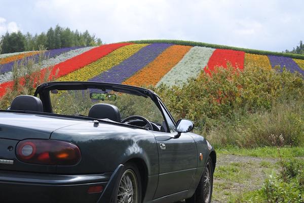 美瑛の花畑とユーノスロードスター