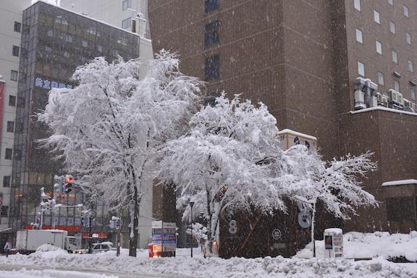 札幌は翌日23日も大雪が続く