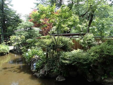 28 7 新潟 田中温泉 しなの荘 6