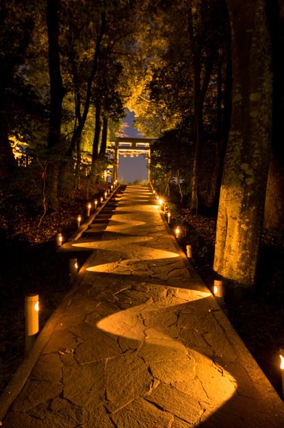 武雄神社ライトアップ♪3