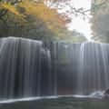 Photos: 朝靄の鍋ヶ滝♪2