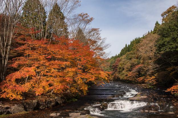 秋の遊水峡♪3