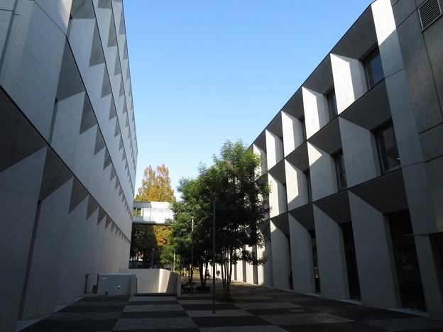 立教大学新座キャンパス4・8号館