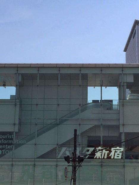 パスタ新宿