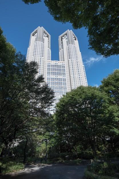 [140]「東京を緑の都に」