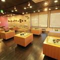 Photos: 茨城県北芸術祭 406  奥久慈茶の里公園