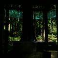 Photos: 茨城県北芸術祭 355  御岩神社