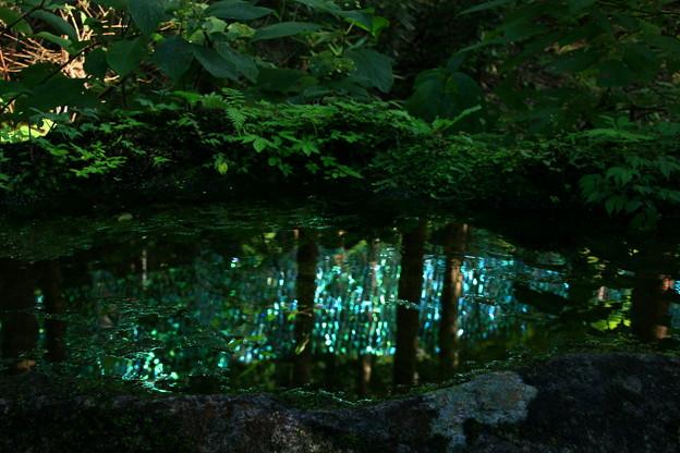 Photos: 茨城県北芸術祭 356  御岩神社