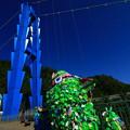 Photos: 茨城県北芸術祭 602  竜神大吊橋