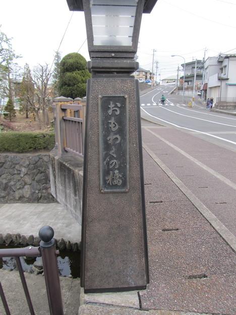29.3.8おもわくの橋