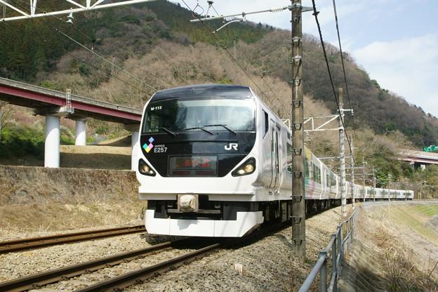 DSC08756(1)