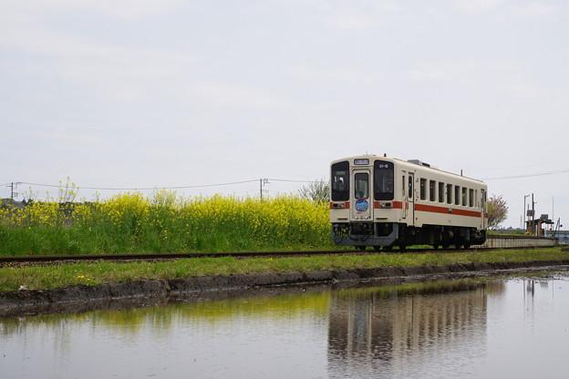 DSC01927