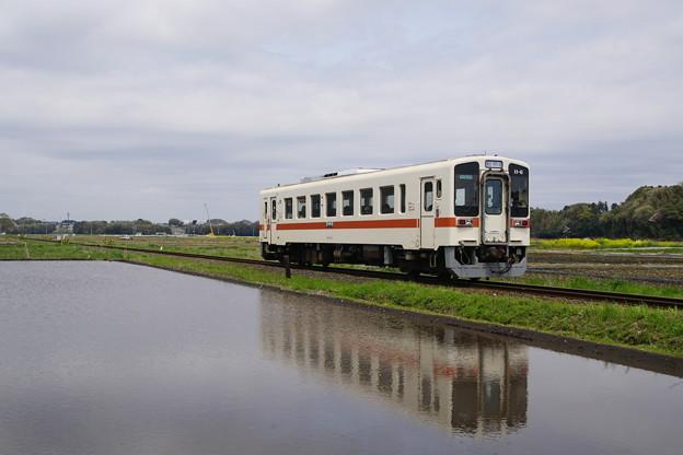 DSC01934