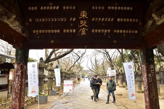 写真: 170209上野公園 (3)