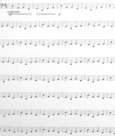 東京・中野・練馬・江古田、ヴァイオリン・ヴィオラ・音楽教室 リピート