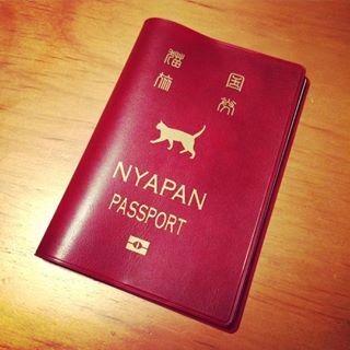 東京・中野・練馬・江古田、ヴァイオリン・ヴィオラ・音楽教室 パスポート