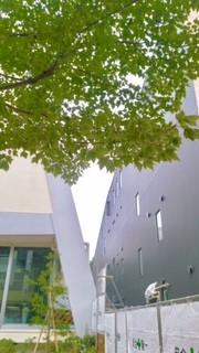 東京・中野・練馬・江古田、ヴァイオリン・ヴィオラ・音楽教室 新校舎