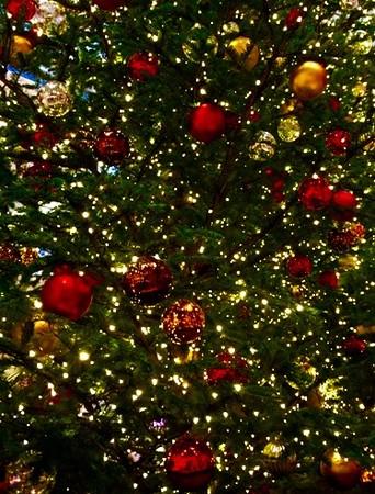 東京・中野・練馬・江古田、ヴァイオリン・ヴィオラ・音楽教室<br /> クリスマス