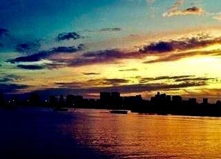 東京・中野・練馬・江古田、ヴァイオリン・ヴィオラ・音楽教室<br /> お休み