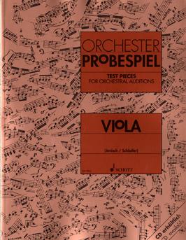 オーケストラに入りたい! 東京・中野・練馬・江古田、ヴァイオリン・ヴィオラ・音楽教室