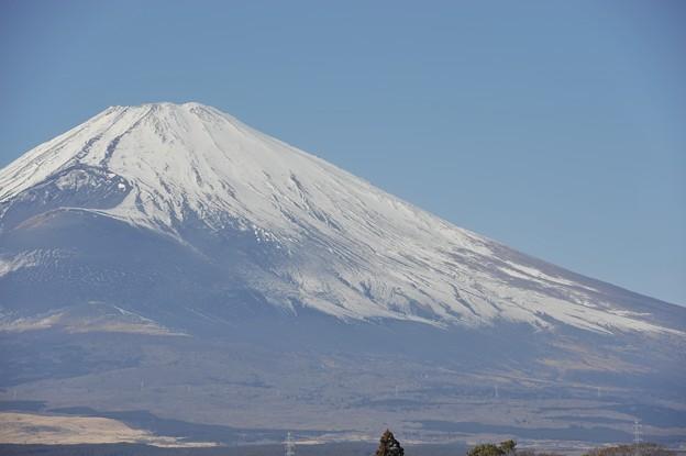 富士岡からの富士山