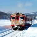 写真: 今はなきJR北海道深名線(1994年冬)天塩弥生駅にて