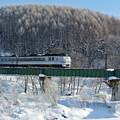 JR宗谷本線 樹氷の中を走る